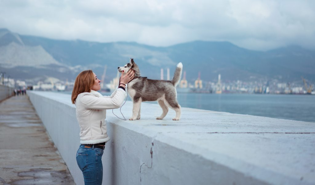 A women talk to her dog about esa certification for dogs